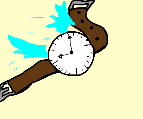 A flying watch