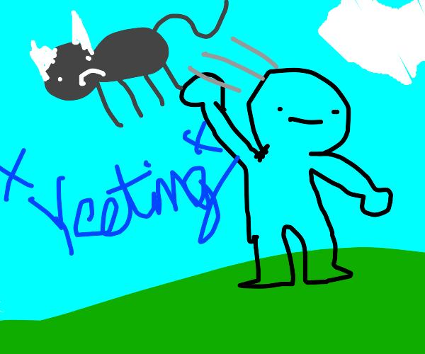yeet a cat