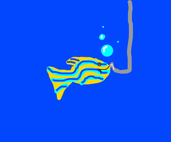 Cought a yellow and blue striped fish