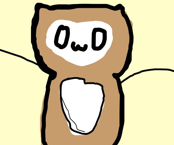 Owl going OwO