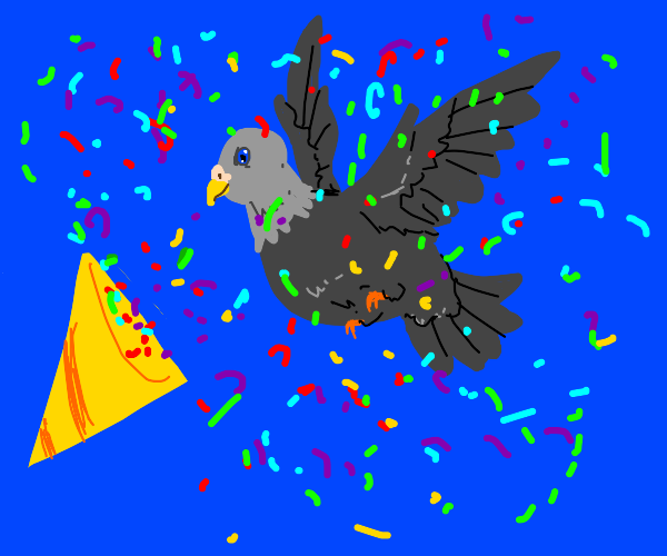 Pigeon arrives in confetti explosion!