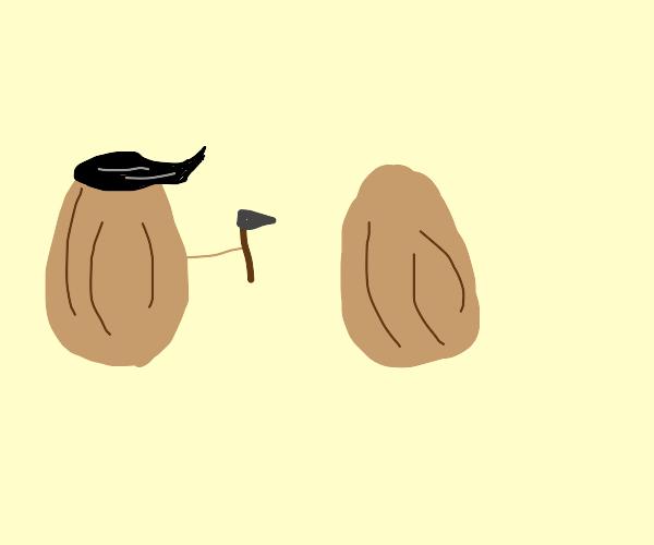 Walnut with nice hair sculpting other walnut