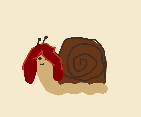A long haired snail