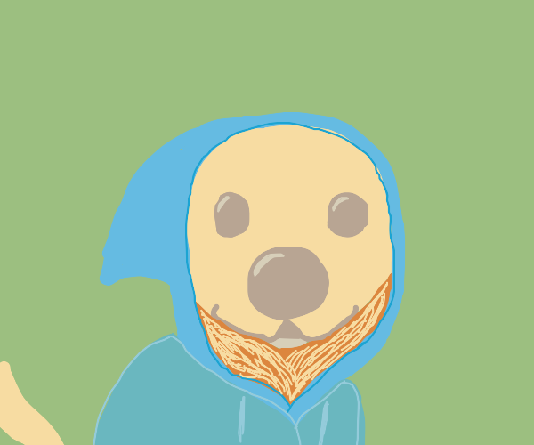 dog in a blue hoodie
