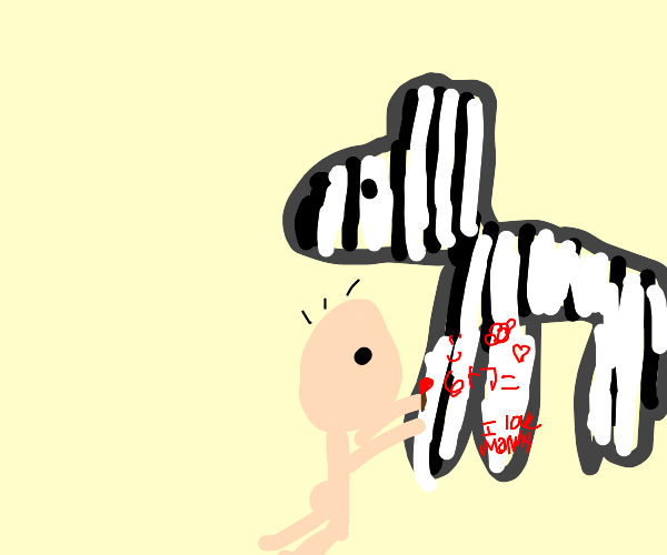man does his math on a zebra