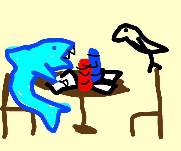 a shark and a bird, gambling