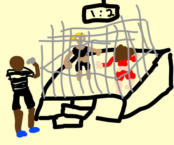 WWE cage match