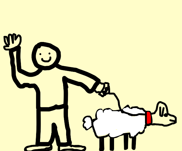 Guy and a pet sheep