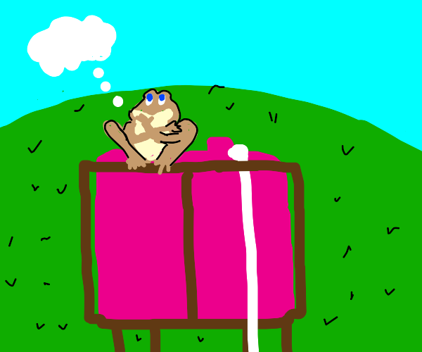 frog in a pink tank top thinks