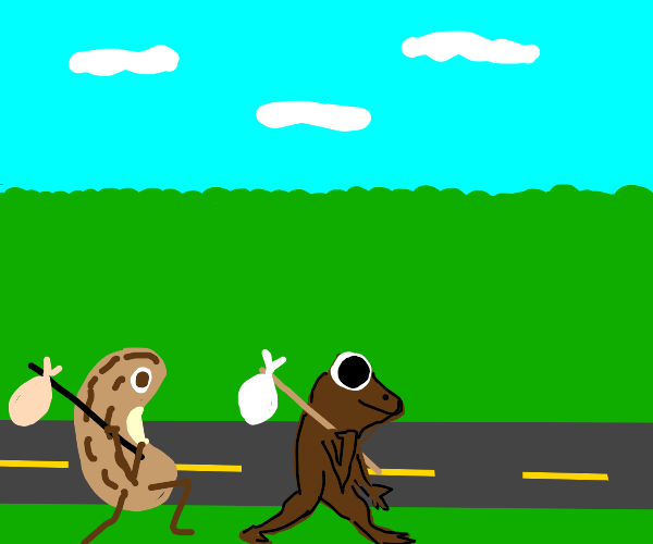 Frog & Beans on a journey