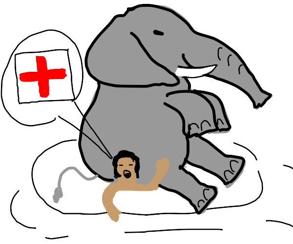 person sat on by elephant calls for MEDIC