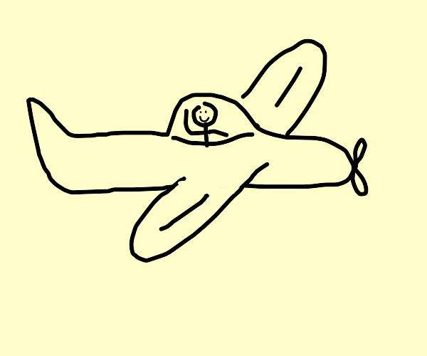 Plane with the pilot smiling out at you