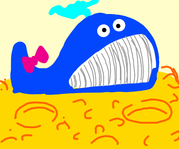lovey whale on  the moon