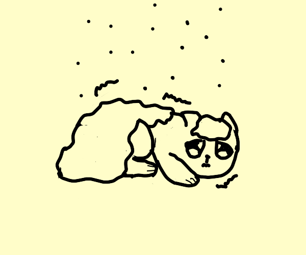 Cat freezing in the snow... D: