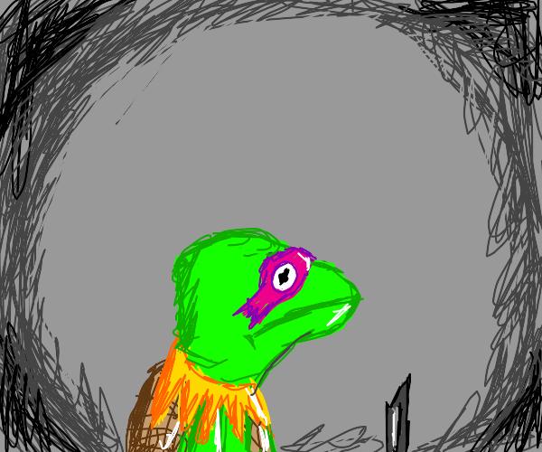 Kermit is a teenage mutant ninja turtle