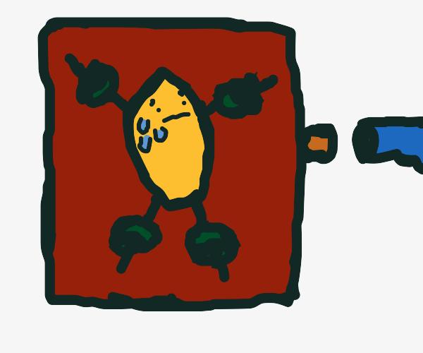 lemon execution