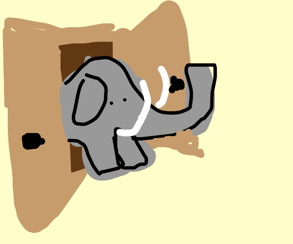 elephant coming out of small wooden cupboard