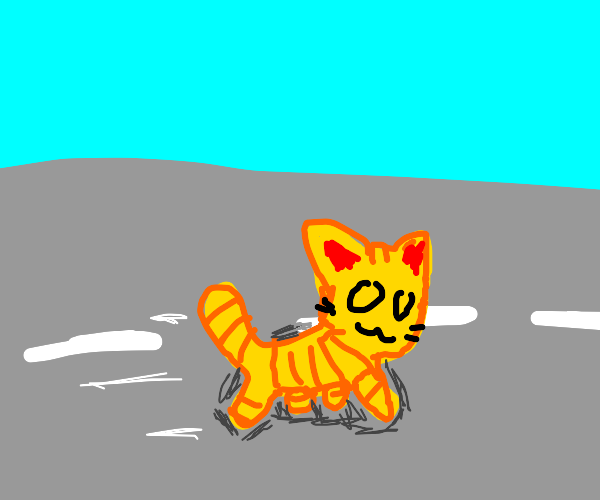 OwO cat walking down the street