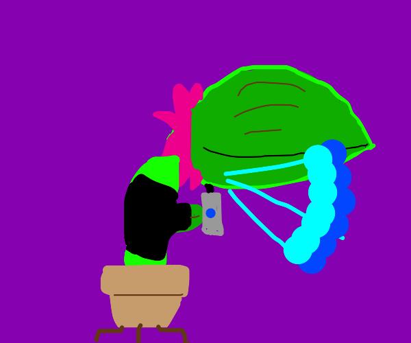 delinquent plant