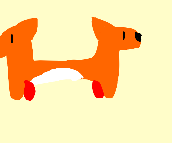 two foxes joined together (like catdog)