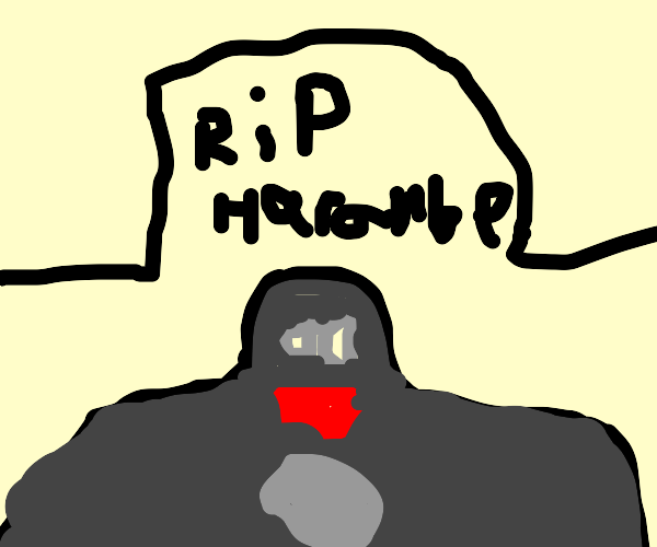 rest in peace harambe