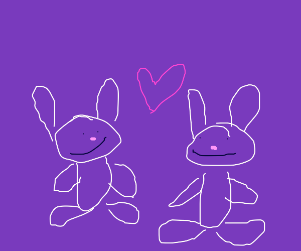Two rabbits love each other