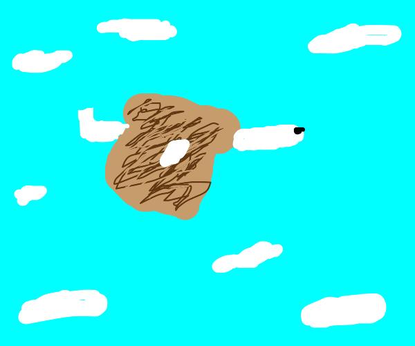 a toasty plane