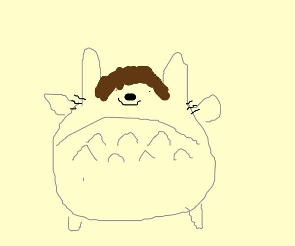 Totoro Wearing a Wig