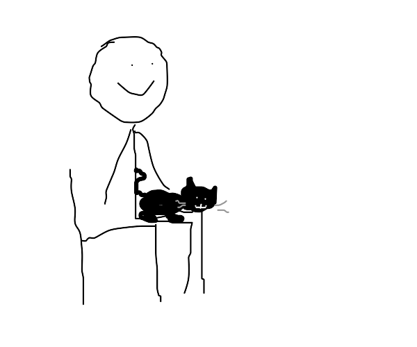 Black cat sitting on a lap