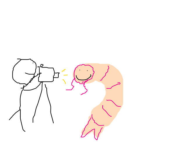 Taking a picture of a Shrimp