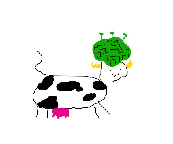 Alien mind cow