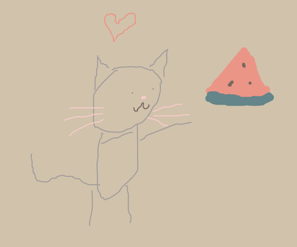 cat with a watermelon