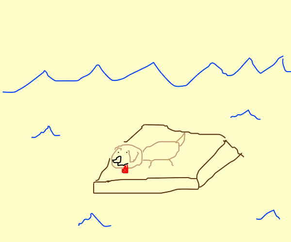 cute puppy on a raft in the middle of the sea