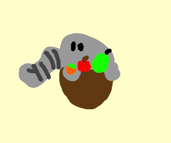 elephant in a fruit basket