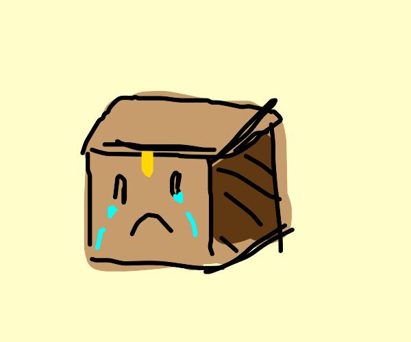 sad minecraft chest