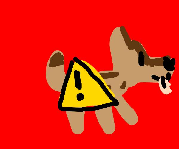 Hazardous dog