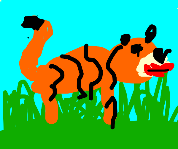 Tiger in a field with a bloody mouth