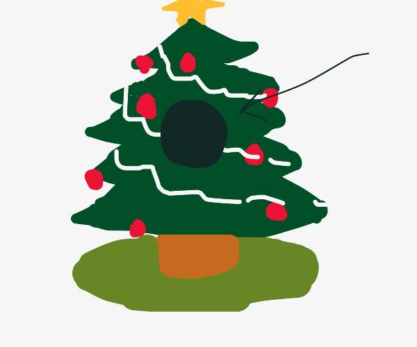 Black hole within a Christmas tree