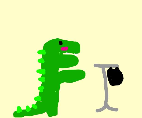 Alligator buying clothes