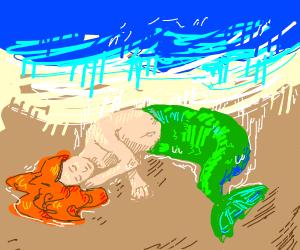 Mermaid washes ashore