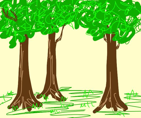 trees : )