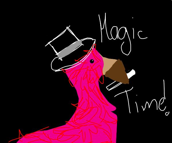 flamingo magician