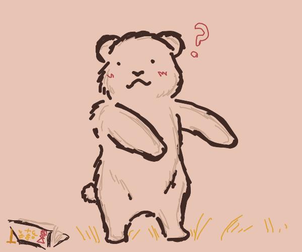 bear fails at doing dab