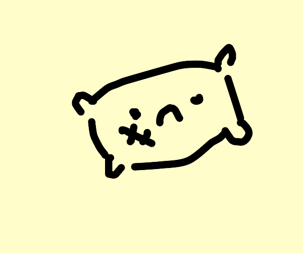 Pillow has a scratch