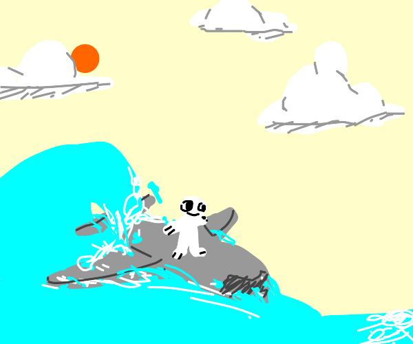 Jet Surfing