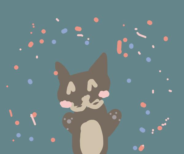 A 100 percent adorable cat