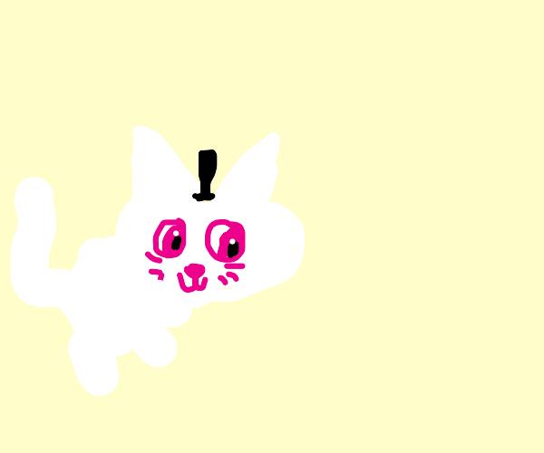 Cute kitteh wearing hat!