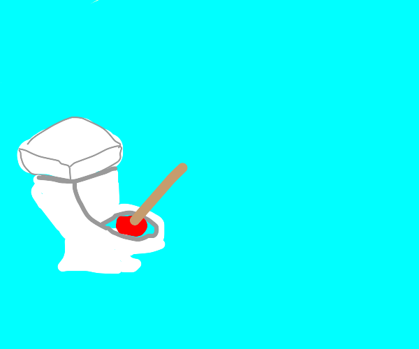 A plunger in a toilet