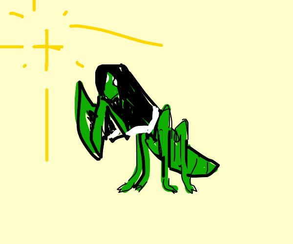 A praying mantis nun