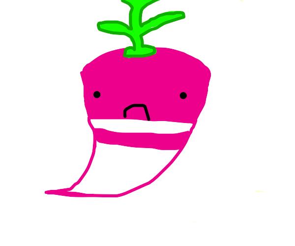 frowning radish